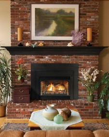 Innsbrook 33,000 Btu Traditional Direct-Vent Fireplace Insert shown with optional three- inch metal surround and Universal Metal Shroud.